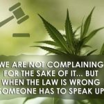 WHEN WILL MEDICINAL CANNABIS BE MADE LEGAL?